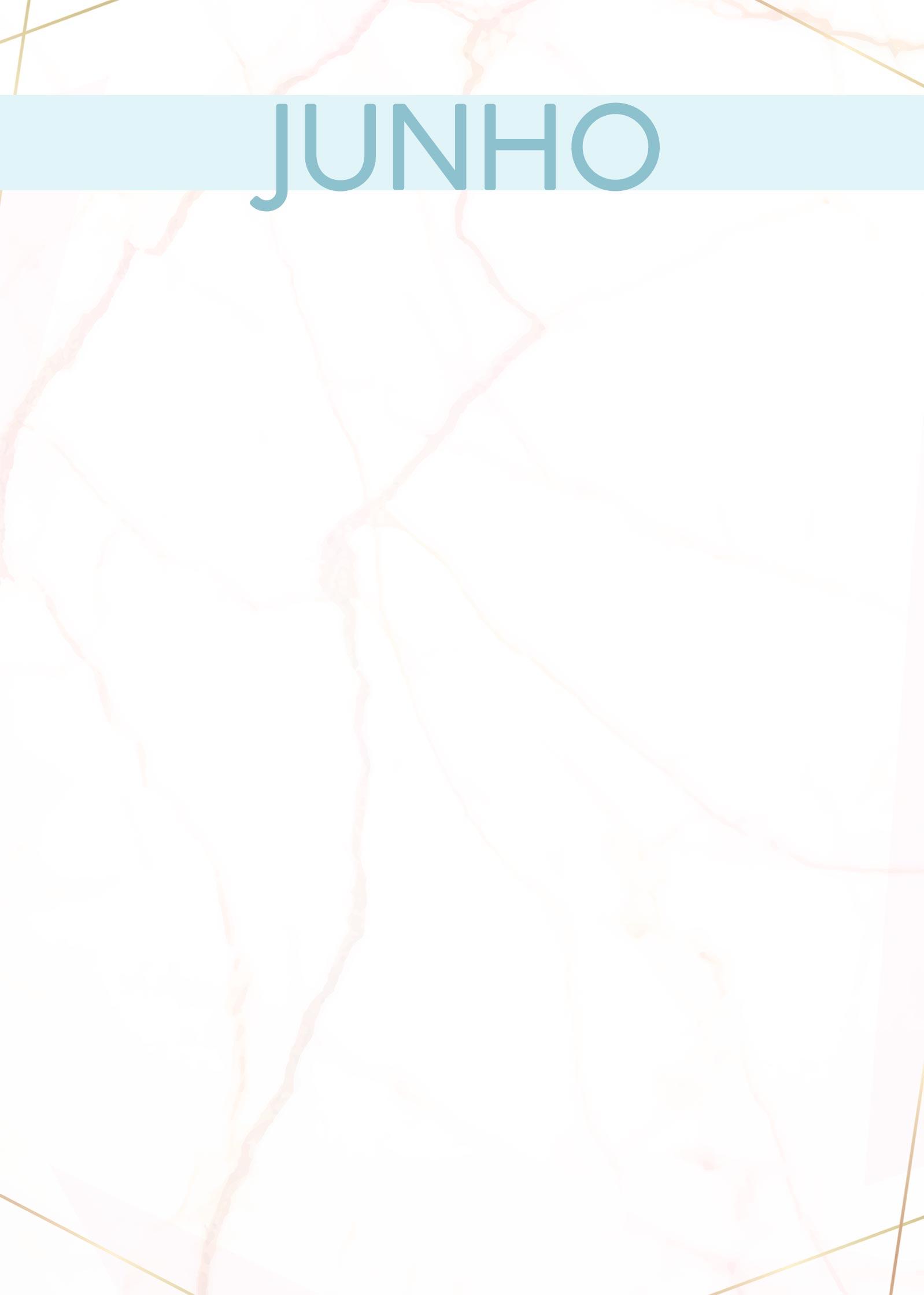 Planner Marmore capa junho