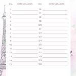 Planner Paris metas diarias agosto