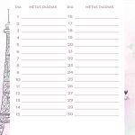 Planner Paris metas diarias dezembro