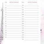 Planner Paris metas diarias maio