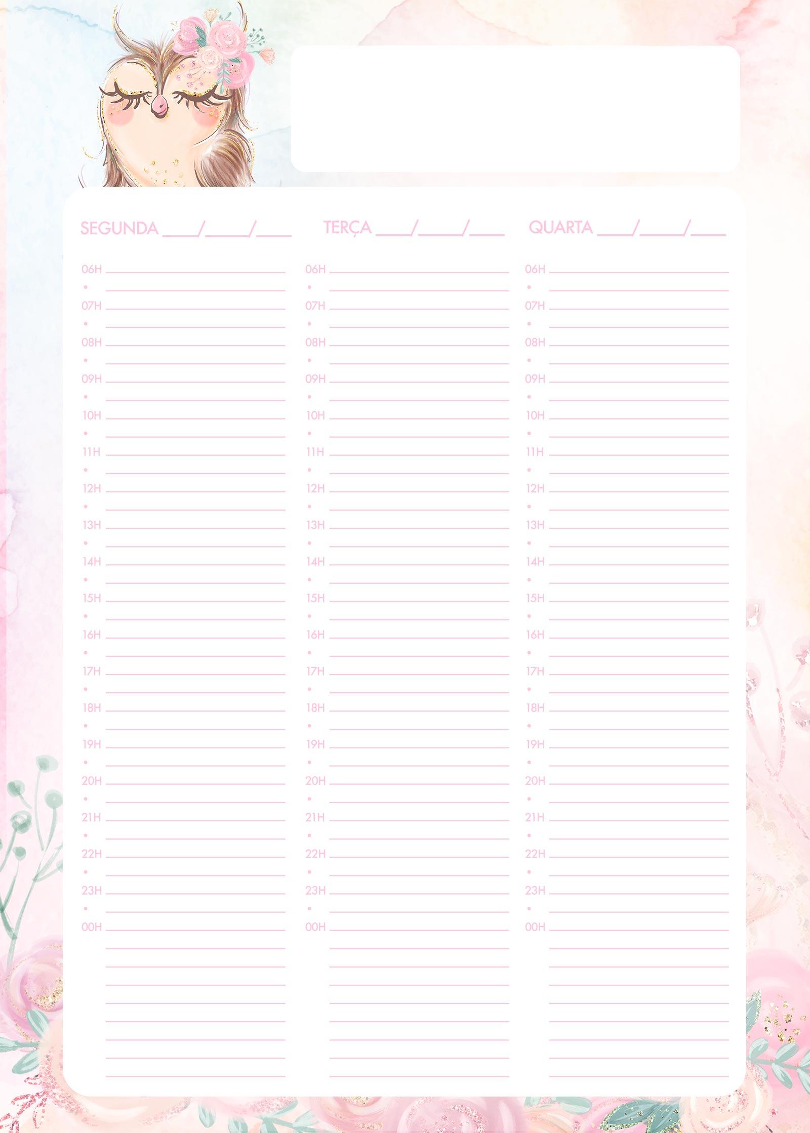 Planner Semanal Corujinha 1