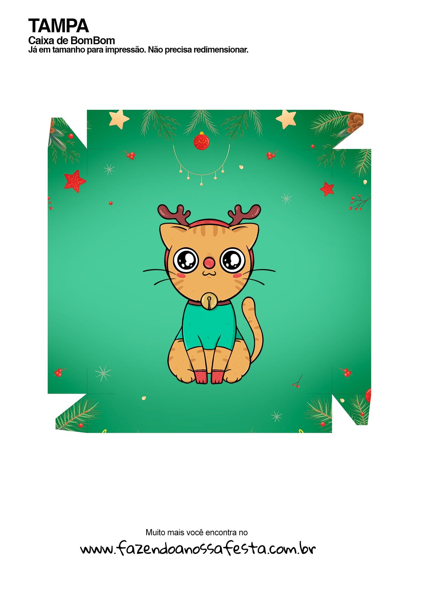 Caixa Gatinhos Natal Laranja