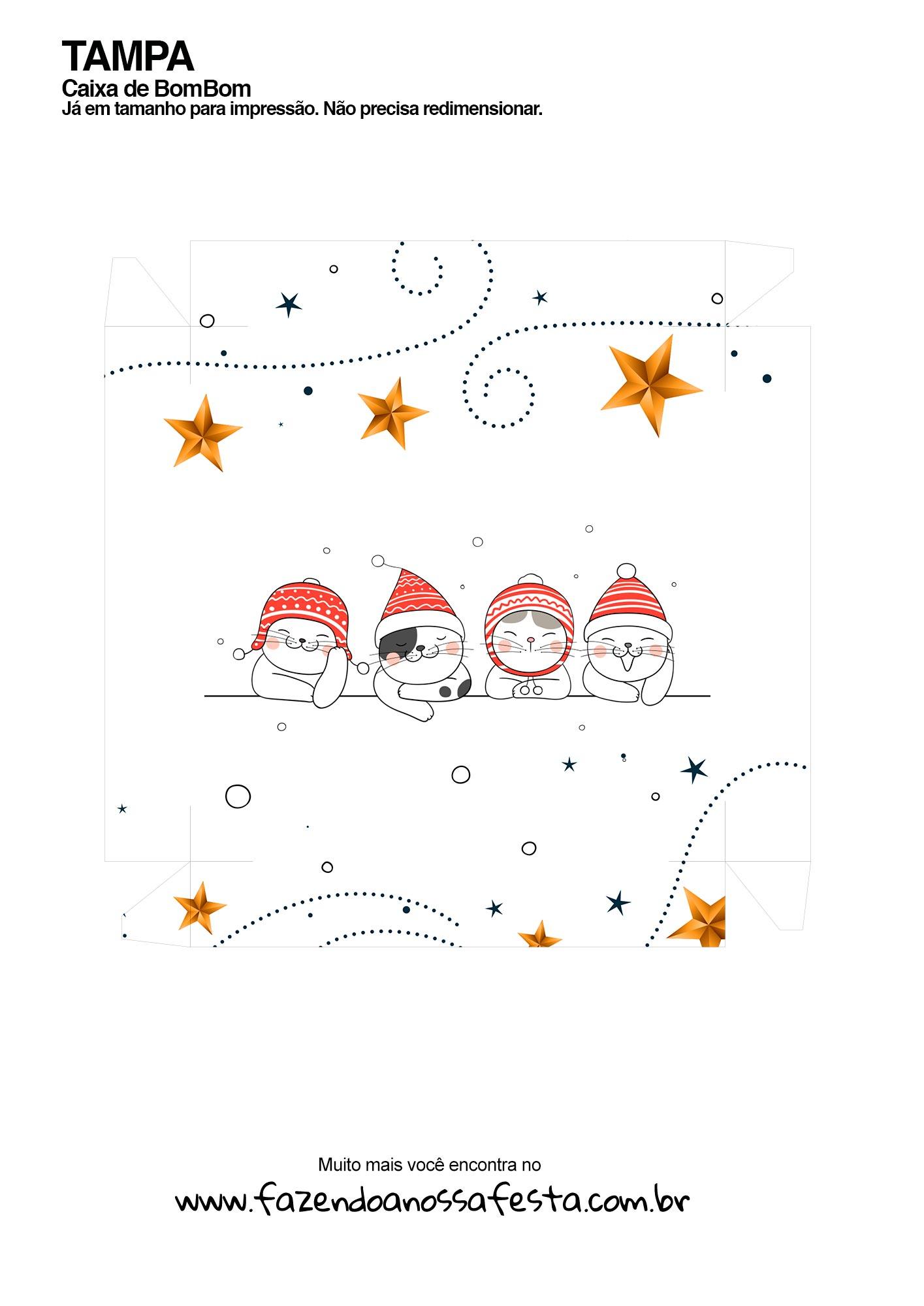 Caixa Gatinhos com touca de Natal tampa