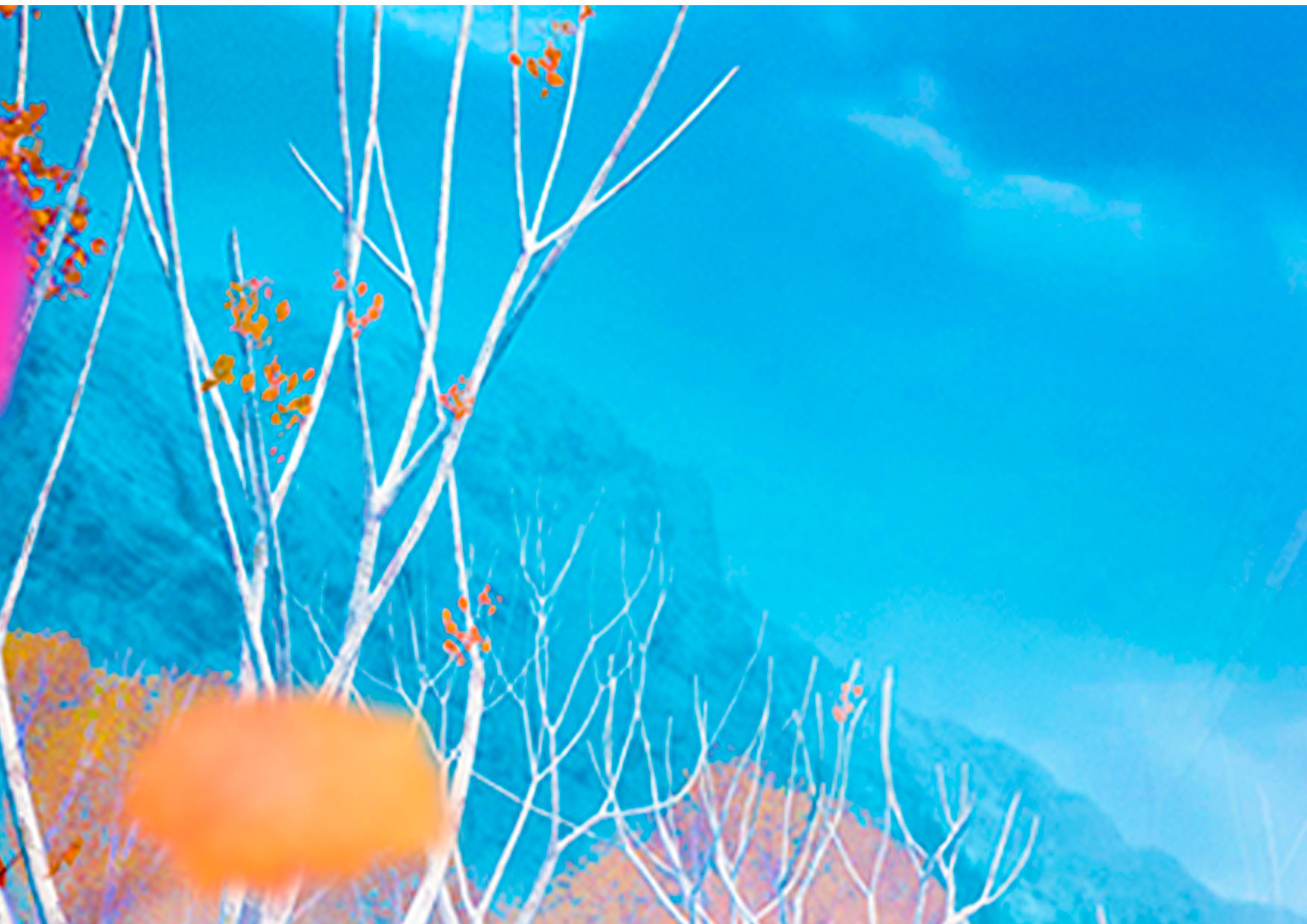 Painel Festa Frozen 2 1