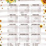 Planner Professor 2020 para Imprimir Calendario