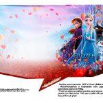 Plaquinhas Frozen 2 25