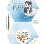 Caixa Explosiva Dia das Maes Pinguim 1