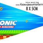 Bandeirinha Sanduiche personalizado Sonic