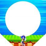 Bandeirinha Varalzinho Sonic