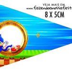 Bandeirinha sanduiche Sonic