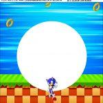 Bandeirola personalizada Sonic