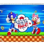 Caixa Controle de Video Game Tampa Sonic