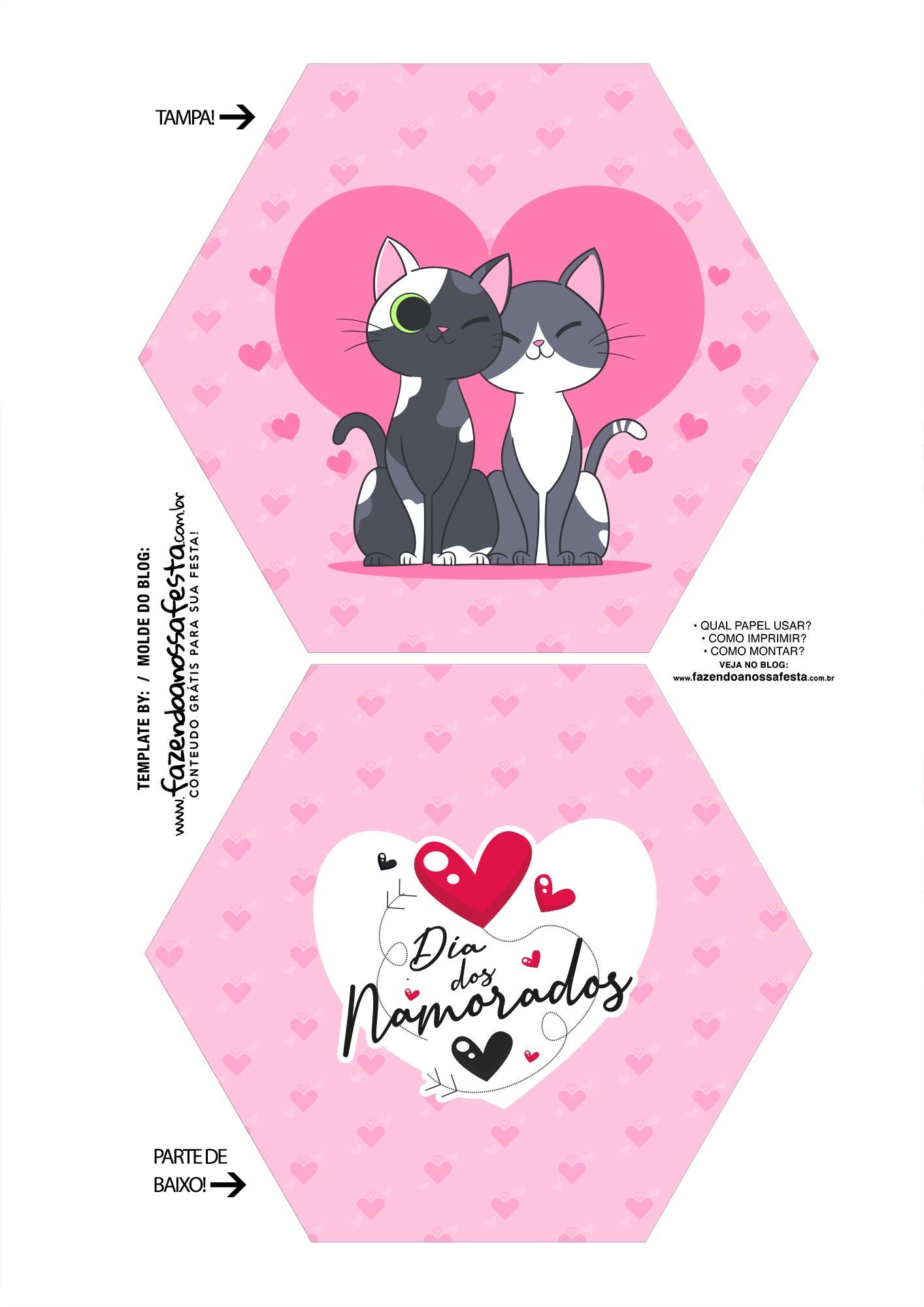 Caixa Explosiva Dia dos Namorados Gatinhos 1
