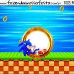 Rotulo Squeezer Sonic