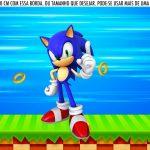 Saia Lateral de Bolo Sonic