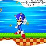 Topper Bandeirinha Sonic
