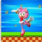 rotulo adesivo caixa de acrilico Sonic