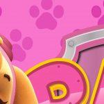 Painel Festa Patrulha Canina Rosa 6