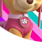 Painel Redondo Patrulha Canina Rosa 14