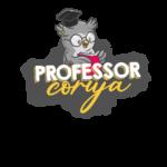 Professora Coruja Dia dos Professores