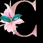 Letra com Flor C