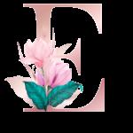 Letra com Flor E