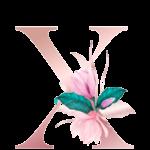 Letra com Flor X