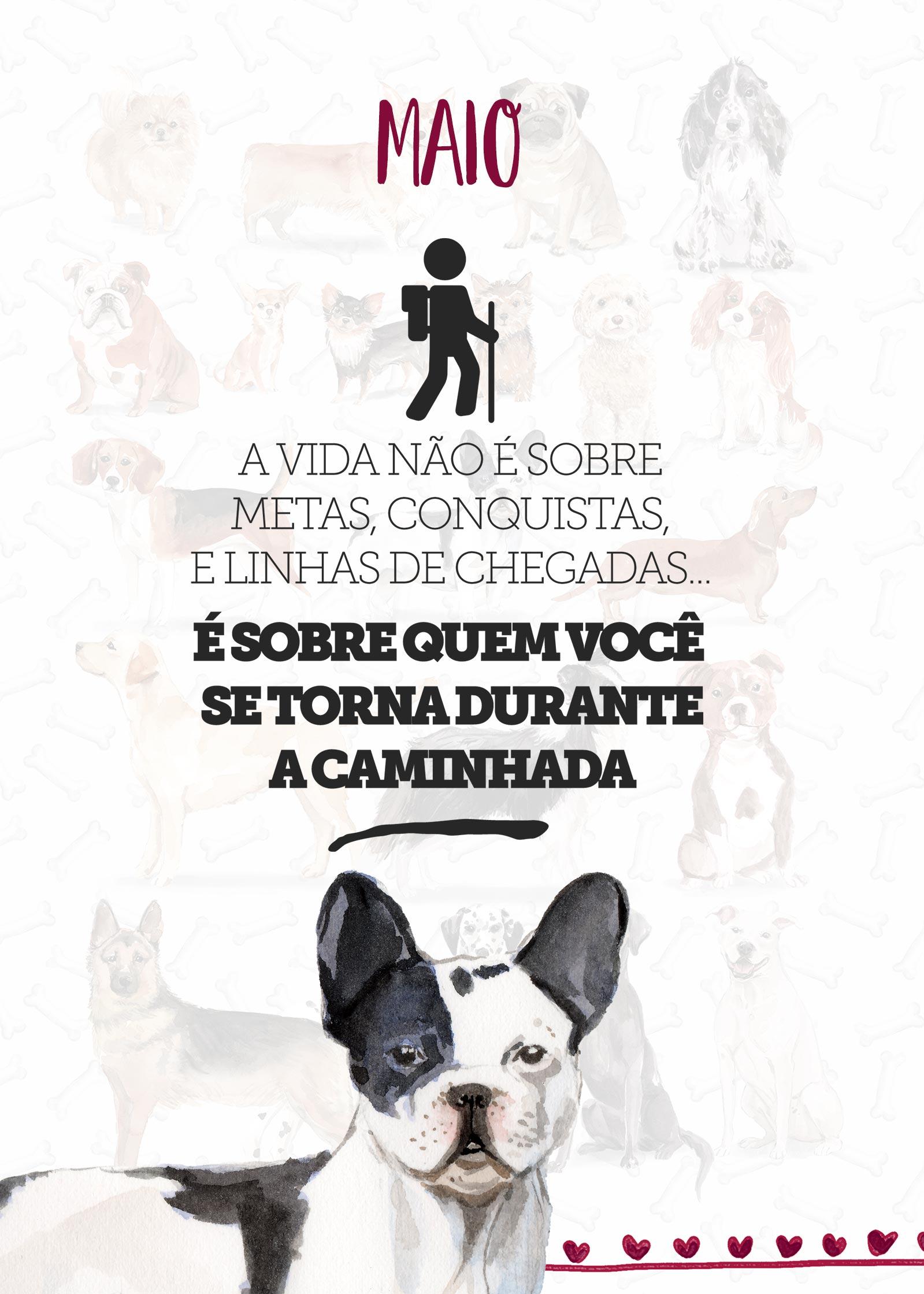 Planner Dogs Maio Capa