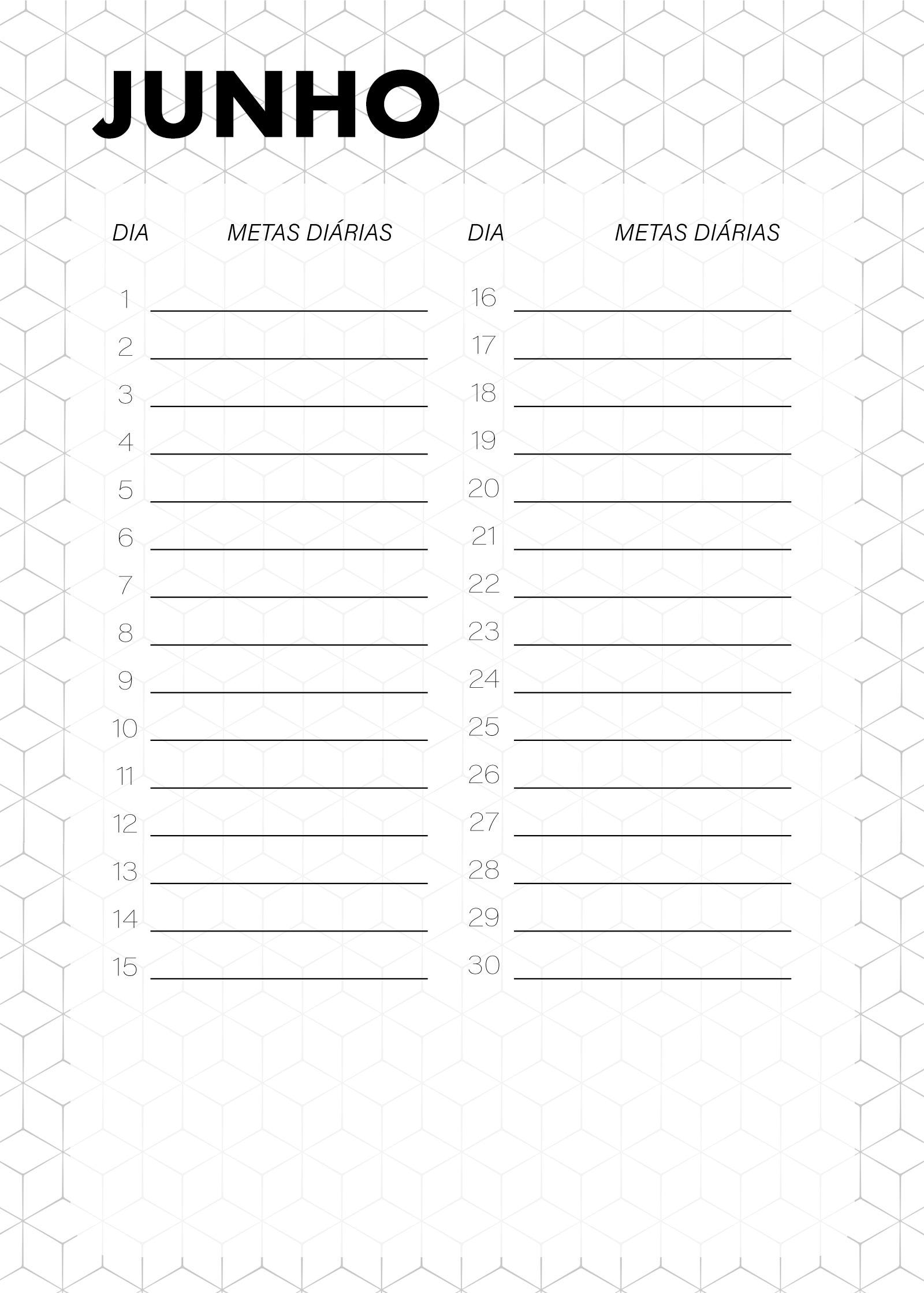 Planner Preto e Branco Metas Diarias Junho