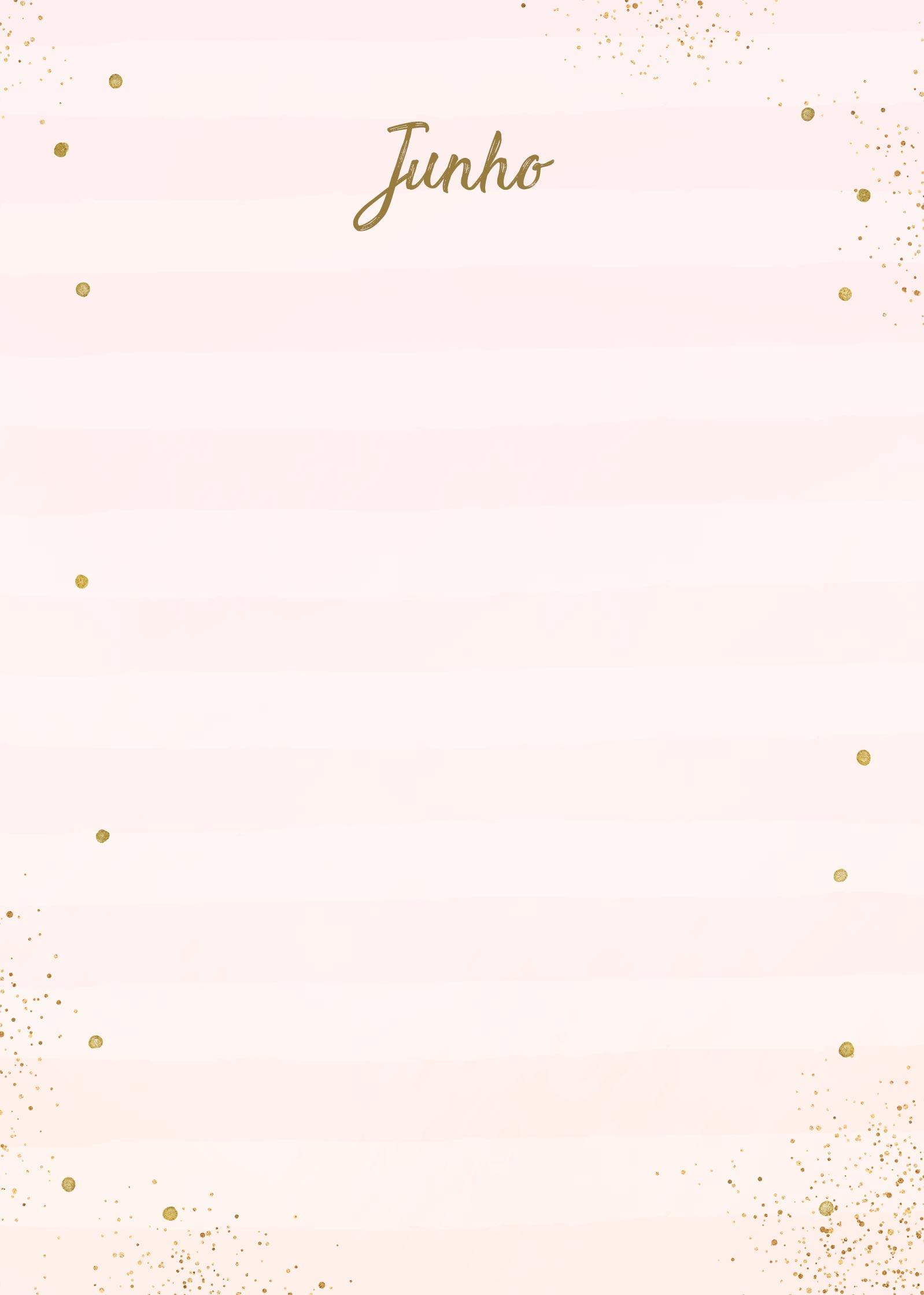 Planner Rose Gold Junho Capa