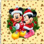 Molde Caixa Acrilica Natal Mickey e Minnie