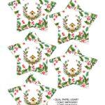 Molde Estrela de Natal Acrilica 3