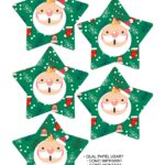Molde Estrela de Natal Acrilica Papai Noel