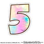 Numero 5 Tie Dye