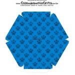 Caixa Explosiva Pascoa Patrulha Canina 10